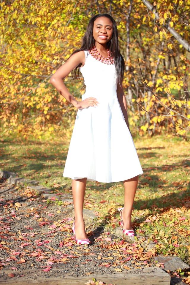 Fall fashion, Flare dress, midi dress, midi dress, reversible necklace, stripe sandals, fashion blogger, Alaska blogger