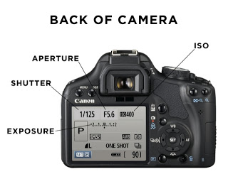 ISO, Shutter Speed, and Aperture