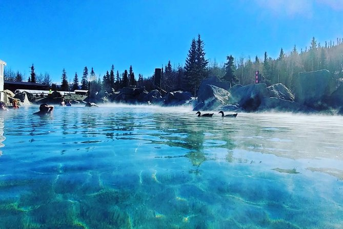 Chena Hot Springs Day Trip